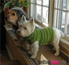 crocheted-dog-sweater-pattern-a-place-for-learning-232x216