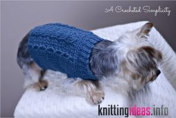 free-charity-crochet-pattern-cabled-dog-sweater-a-crocheted-254x170