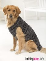 free-dog-sweater-crochet-patterns-psychedelic-doilies-151x201
