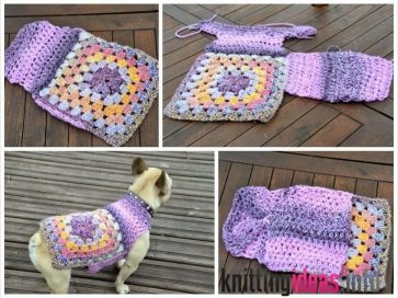 how-to-crochet-a-dog-sweater-tips-and-tricks-to-keep-your-pet-warm-363x272