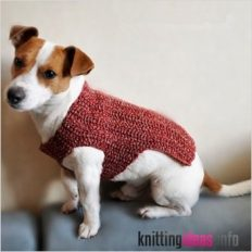 knitted-crochet-dog-sweater-manufacture-in-china-buy-dog-232x232