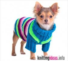 the-crochet-dog-sweater-fashion-or-warmth-227x206