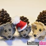 with-alex-pine-cone-crochet-hedgehog-free-pattern-and-video-2-150x150